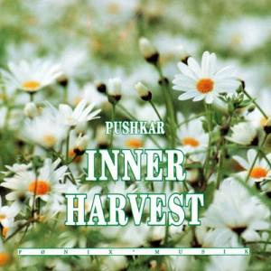 Inner Harvest Pushkar