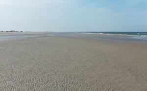 Plaża nad Morzem Północnym w czasie odpływu