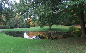 Zwierciadło stawu i jesienny widok