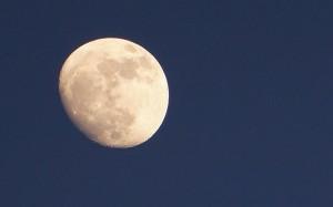 Dobranoc mówi Księżyc.