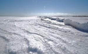 Plaża zimą.