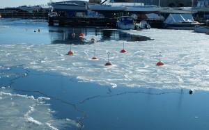 Zimowy spokój w porcie jachtowym.