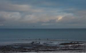 Morska plaża zimą.