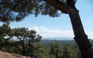 Górski krajobraz w Grecji na Rodos